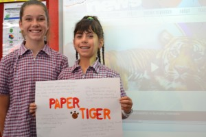 Papaer Tigers